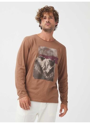 Xint Tişört Camel